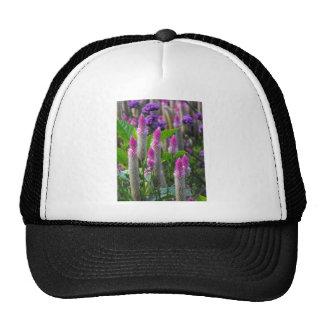 Cockscomb Spikes Hats