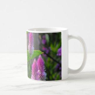 Cockscomb Spikes Coffee Mugs