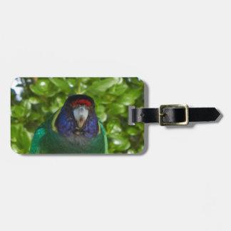 Cocky 28 bag tag
