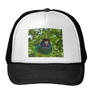 Cocky 28 trucker hat