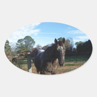 Coco and Cream brown horse Oval Sticker