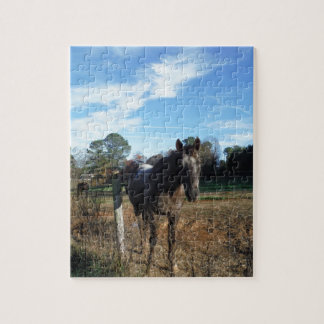 Coco and Cream brown horse Puzzle