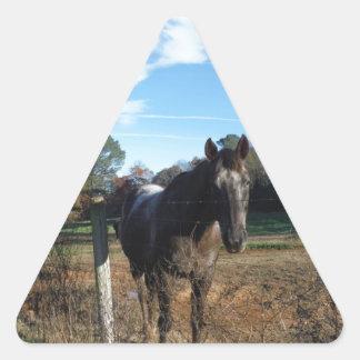 Coco and Cream brown horse Triangle Sticker