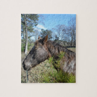 Coco and Cream Colored Horse Jigsaw Puzzles