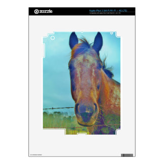 Coco Brown Horse Denim Sky Decals For iPad 3