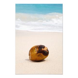 Coco en una playa tropical foto