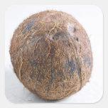 Coco para el uso en los E.E.U.U. solamente.) Pegatina Cuadrada