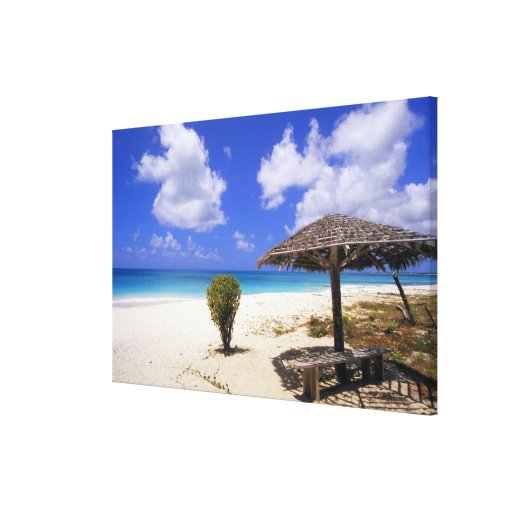 Coco Point Beach, Barbuda, Antigua Gallery Wrapped Canvas