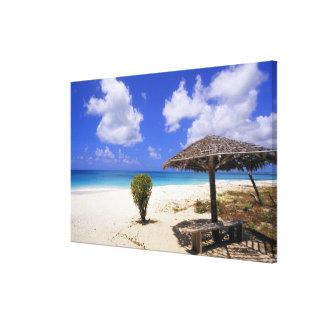 Coco Point Beach, Barbuda, Antigua Canvas Print