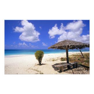Coco Point Beach, Barbuda, Antigua Photo Print