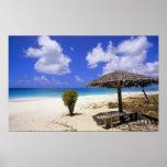 Coco Point Beach, Barbuda, Antigua Poster