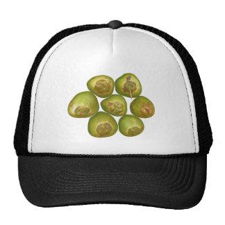 Coco verde rechoncho gorras