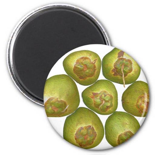 Coco verde rechoncho imán redondo 5 cm