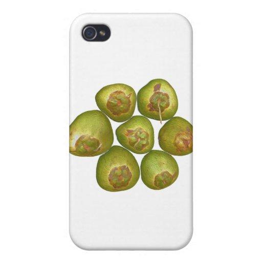 Coco verde rechoncho iPhone 4 fundas
