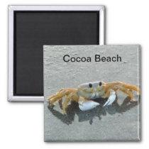 Cocoa Beach Crab Photo Magnet Florida