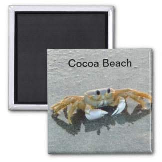 Cocoa Beach Crab Photo Magnet Florida