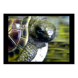 Cocoa Beach Fl Turtle Egg Art1 jGibney ACT-Open Ed Large Business Cards (Pack Of 100)