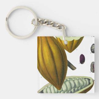 Cocoa bean vintage illustration keychain