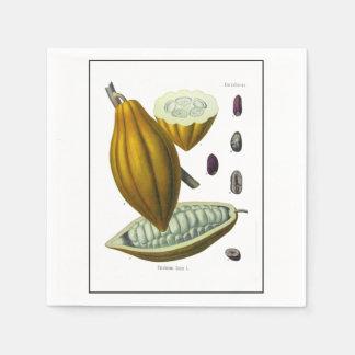 Cocoa bean vintage illustration napkin