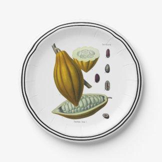 Cocoa bean vintage illustration paper plate