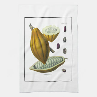 Cocoa bean vintage illustration towel