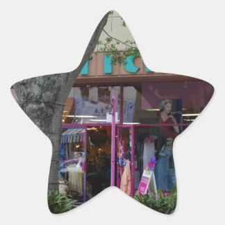Cocoa Florida Star Sticker