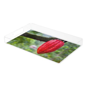 Beach Themed cocoa pod red acrylic tray