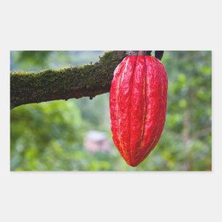 cocoa pod red rectangular sticker