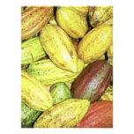Cocoa pods photo print