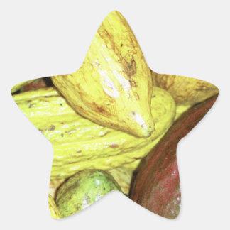 Cocoa pods star sticker