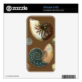 Cocoa Shell iPhone 4 Decals