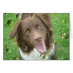 Cocoa - the fabulous Aussie Stationery Note Card