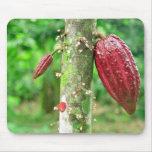 Cocoa tree mousepads