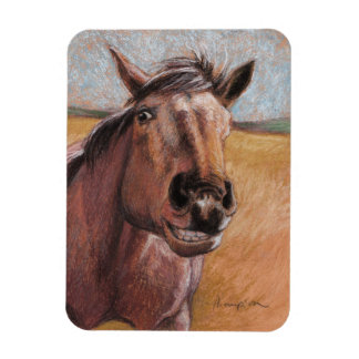 Cocoa Wants a Cookie funny horse magnet