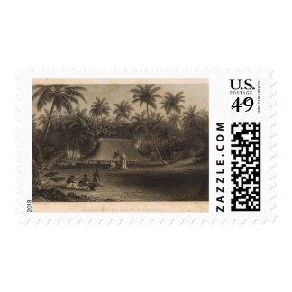 Cocoanut Grove, Fakaafo Postage Stamp