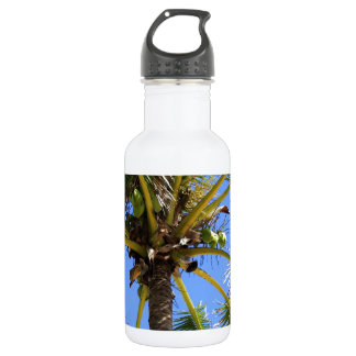 Cocoanut Tree Background Stainless Steel Water Bottle