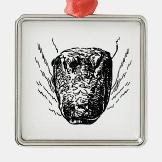 Cocodrilo americano adorno cuadrado plateado
