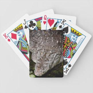Cocodrilo Baraja Cartas De Poker