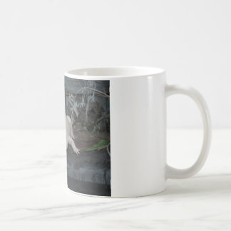 cocodrilo blanco taza