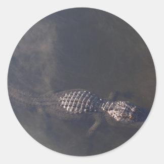 Cocodrilo de la natación pegatina redonda