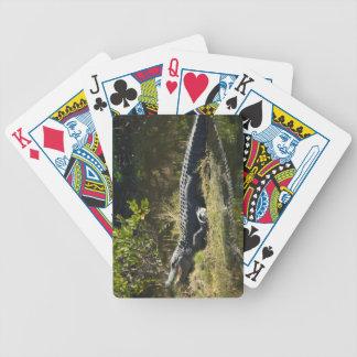 Cocodrilo en el Sun Baraja Cartas De Poker