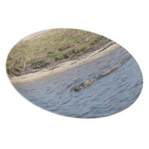 Cocodrilo en la placa del agua platos