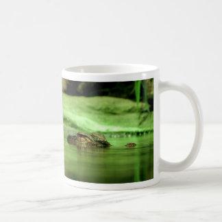 Cocodrilo en taza de la foto del agua