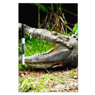 Cocodrilo gigante con su boca abierta tableros blancos