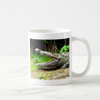 Cocodrilo gigante con su boca abierta taza