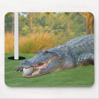 Cocodrilo Golfing Mousepad de la mentira peligrosa