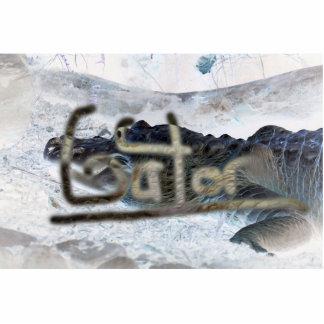 cocodrilo invertido con el cocodrilo de la palabra escultura fotografica