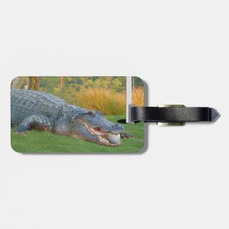 Cocodrilo, mentira peligrosa en golf etiquetas maletas