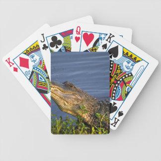 Cocodrilo que se arrastra para arriba baraja cartas de poker