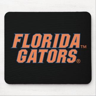 Cocodrilos de la Florida - naranja y azul Mouse Pad